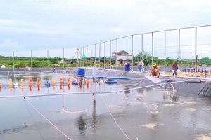Quảng Yên: Phát huy thế mạnh nuôi trồng thủy sản