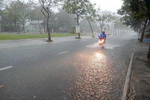 Khẩn trương ứng phó với cơn bão số 5 trên Biển Đông