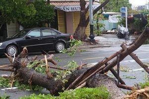 Đà Nẵng sau cơn mưa lớn do ảnh hưởng của bão số 5