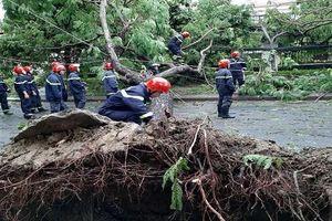 Thừa Thiên – Huế: Một người chết, 23 người bị thương do bão số 5 gây ra