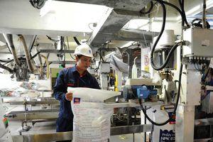 Luật thuế 71: Thiệt hại lớn cho ngành phân bón