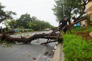Chùm ảnh: Đà Nẵng sau cơn mưa to, gió lớn