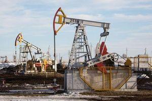 Giá xăng dầu hôm nay 19/9: Vững vàng trên đỉnh 3 tháng
