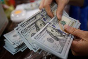 Tỷ giá ngoại tệ ngày 19/9: USD giảm giá