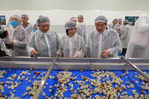 Khánh thành nhà máy chế biến hoa quả lớn nhất Tây Bắc, chấm dứt nỗi đau 'được mùa mất giá' của nông dân