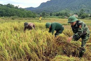 Lính quân hàm xanh Thừa Thiên Huế giúp dân khắc phục hậu quả bão số 5