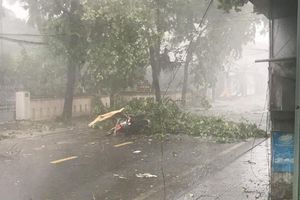 Huế: Một chuyên viên phòng GD&ĐT tử vong do bão số 5