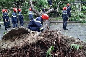 Thêm 2 nạn nhân ở Huế tử vong do bão số 5