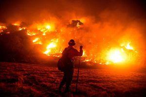 Mỹ: Cháy rừng hoành hành bang California gần nửa tháng