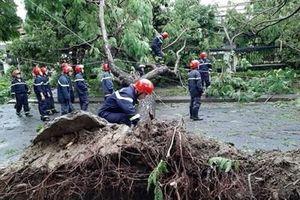 Thừa Thiên Huế: Bão số 5 gây thiệt hại hơn 505 tỷ đồng