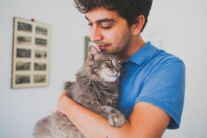Đừng chụp ảnh với mèo nếu muốn hẹn hò