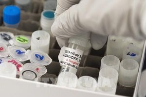 EU và 14 nước kêu gọi phân phối công bằng vaccine ngừa COVID-19