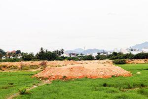 Dự án xây dựng Khu tái định cư Ngọc Hiệp bị chậm trễ: Sẽ cưỡng chế các hộ không hợp tác