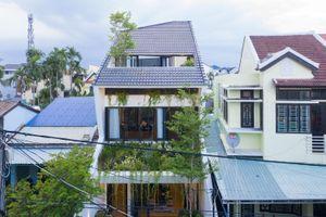 Mát mắt ngắm ngôi nhà xanh giữa Hội An cổ kính