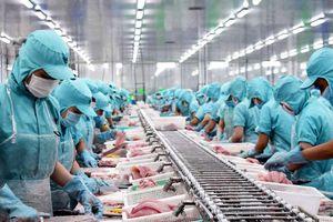 Xuất khẩu thủy sản Việt Nam vào thị trường châu Âu: Gỡ 'rào cản' để mở rộng thị phần