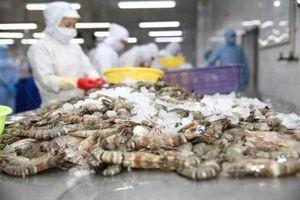 Tôm, cá Việt thắng lớn ở EU nhờ lợi thế trước đối thủ