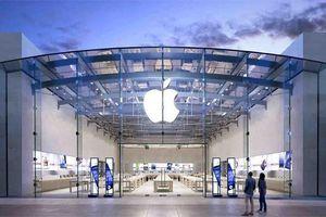 Apple đã lập kế hoạch tìm truyền nhân của Tim Cook