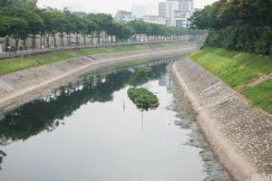 Cải tạo sông Tô Lịch thành công viên, chuyên gia môi trường nói gì?