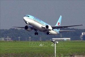 Hãng hàng không lớn nhất Hàn Quốc nối lại đường bay tới Osaka, Nhật Bản