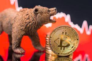 Giá Bitcoin hôm nay 22/9: Toàn thị trường 'nhuốm máu', Bitcoin giảm sập sàn