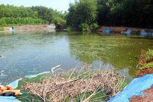 Bị 'tuýt còi', trang trại heo vẫn tiếp tục gây ô nhiễm