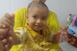 Thanh Hóa: Cứu chữa bé 2 tuổi bị chó cắn với các vết thương nặng