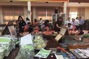 Thị xã Sơn Tây: Sẽ có 3-4 sản phẩm OCOP đạt 4 sao năm 2020