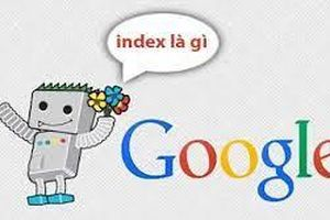 Index là gì? Cách kiểm tra dữ liệu đã được Google index