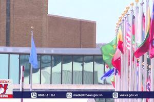 G4 kêu gọi khởi động lại các cuộc đàm phán về cải tổ HĐBA LHQ
