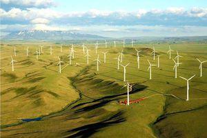 Gia Lai khởi công hai dự án điện gió quy mô lớn trị giá 3.600 tỷ đồng