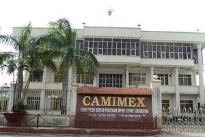 Tổ chức liên quan cổ đông lớn Camimex Group (CMX) đã bán ra 176.970 cổ phiếu
