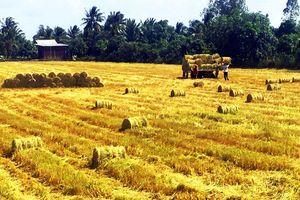 Việt Nam sẽ có mức tăng trưởng dương cao nhất trong ASEAN-5