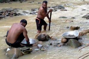 Dân Indonesia đổ xô đi đãi vàng trái phép khi đại dịch COVID-19 bùng phát mạnh mẽ