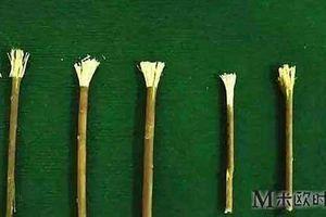 Khi chưa có bàn chải và kem đánh răng, người Trung Hoa xưa phải làm sao để vệ sinh răng miệng?