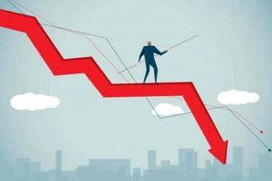 Giải mã những cổ phiếu 'sớm nở tối tàn' trên thị trường