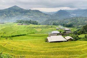 Mê mải mùa vàng ở bờ Tây Hà Giang