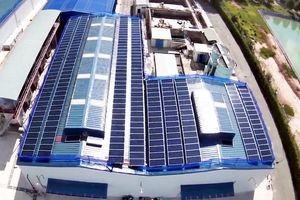 Thị trường điện mặt trời áp mái tăng nhiệt ở những tháng cuối năm 2020