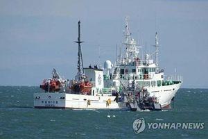Lý do khiến Seoul yêu cầu Bình Nhưỡng điều tra thêm vụ bắn chết viên chức Hàn Quốc