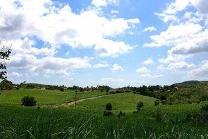 Phú Yên khai trương tuyến du lịch lên cao nguyên Vân Hòa