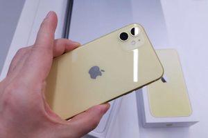 iPhone 11 liên tục được các cửa hàng giảm giá trước khi iPhone 12 ra mắt