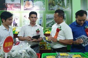 Huyện Hiệp Hòa ra mắt website truy xuất nguồn gốc sản phẩm nông nghiệp