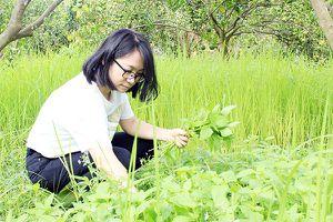 Khởi nghiệp từ niềm đam mê làm vườn