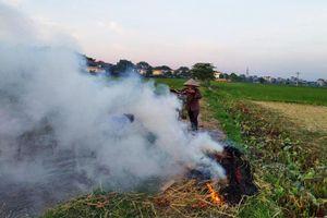 Giải quyết tình trạng đốt rơm rạ: Vẫn chờ những biện pháp quyết liệt