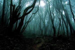 Những địa điểm đáng sợ nhất thế giới