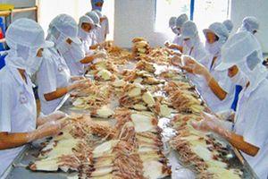 8 tháng, xuất khẩu mực, bạch tuộc đạt gần 345 triệu USD