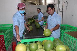 Mỹ mở rộng thêm cửa với nông sản Việt
