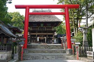 Giải mã cánh cổng Torii thần thánh ở các đền thờ Nhật Bản