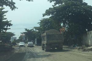 Bất chấp bị xử phạt, xe tải lộng hành, cày nát đường đê ở Hải Dương