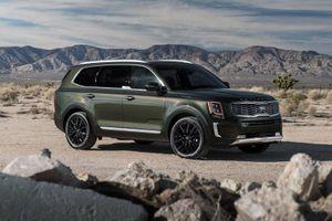Top 10 xe SUV 8 chỗ tốt nhất năm 2020: Kia Telluride góp mặt