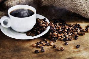 Giá cà phê hôm nay 28/9: Chưa có biến động, Đắk Lắk có giá cao nhất 36.000 đồng/kg